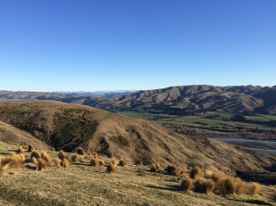 Stunning landscape with the Hurunui and Southern Alps.