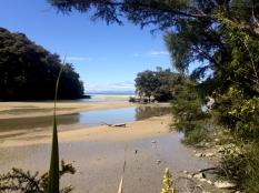 CHIA Abel Tasman_13