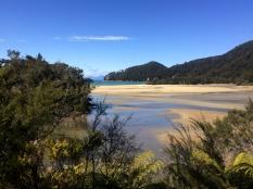 CHIA Abel Tasman_15