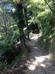 CHIA Abel Tasman_19