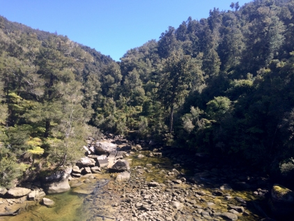 CHIA Abel Tasman_20