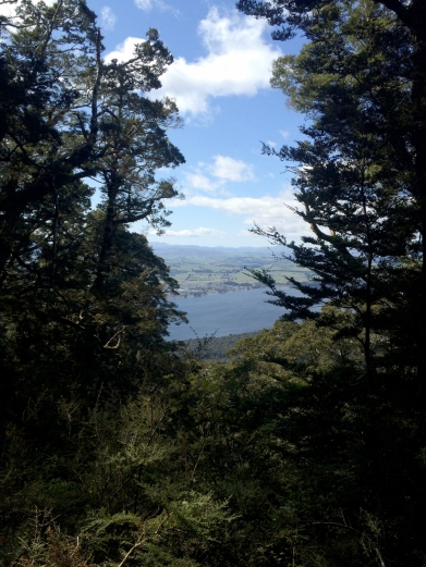 Looking down on the Te Anau township