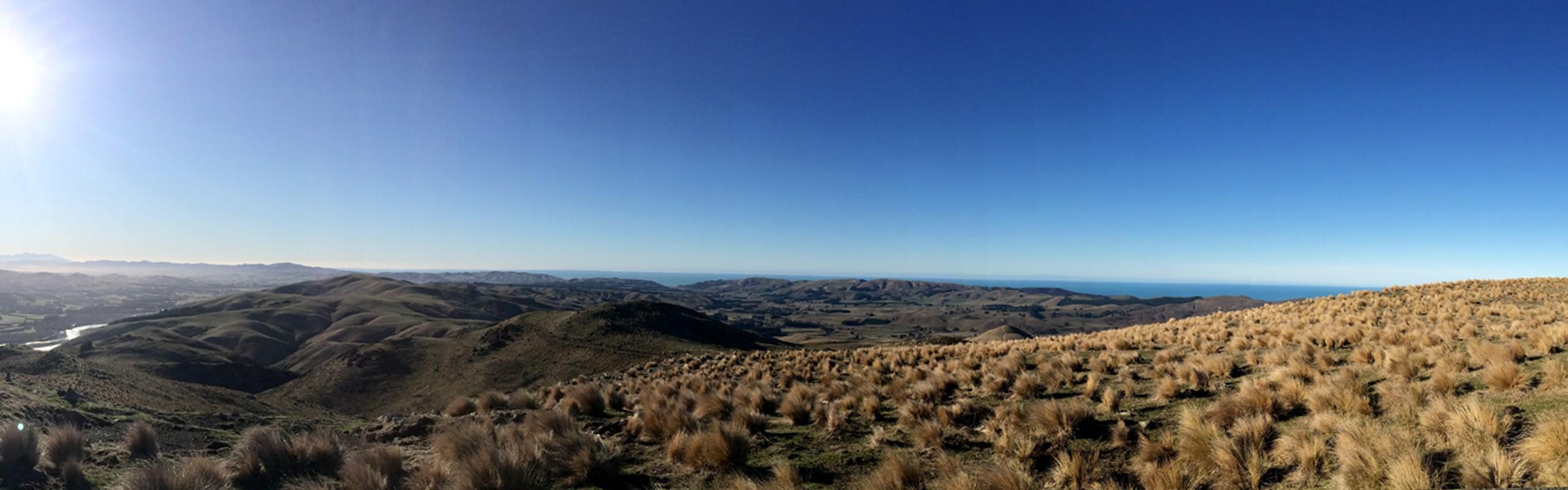 The Adventurous Kiwi