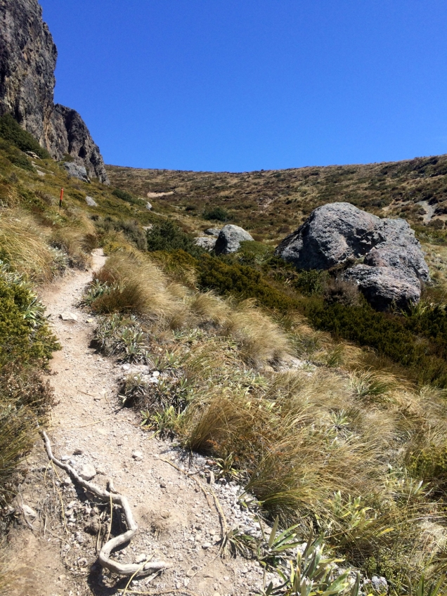 On the downhill - this is looking back up