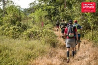 BTU JUngle Ultra_day 3_15