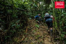 BTU JUngle Ultra_day 4_13