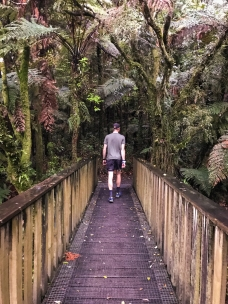 Waitomo-Trail-Run_17