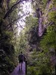 Waitomo-Trail-Run_19