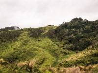 Waitomo-Trail-Run_36