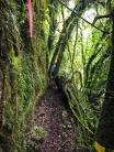 Waitomo-Trail-Run_41